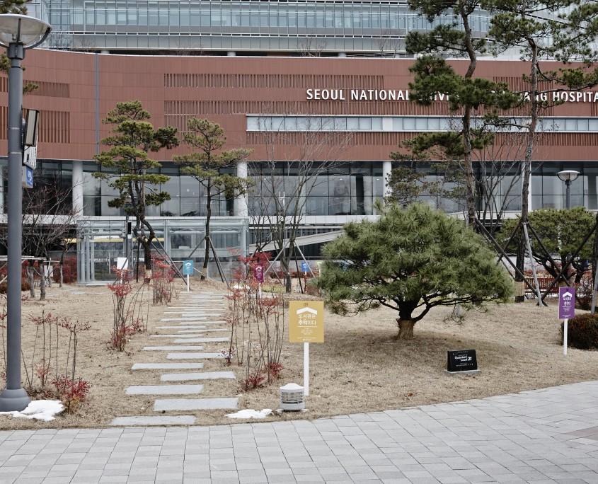 20141210_분당서울대병원(MG_0003)